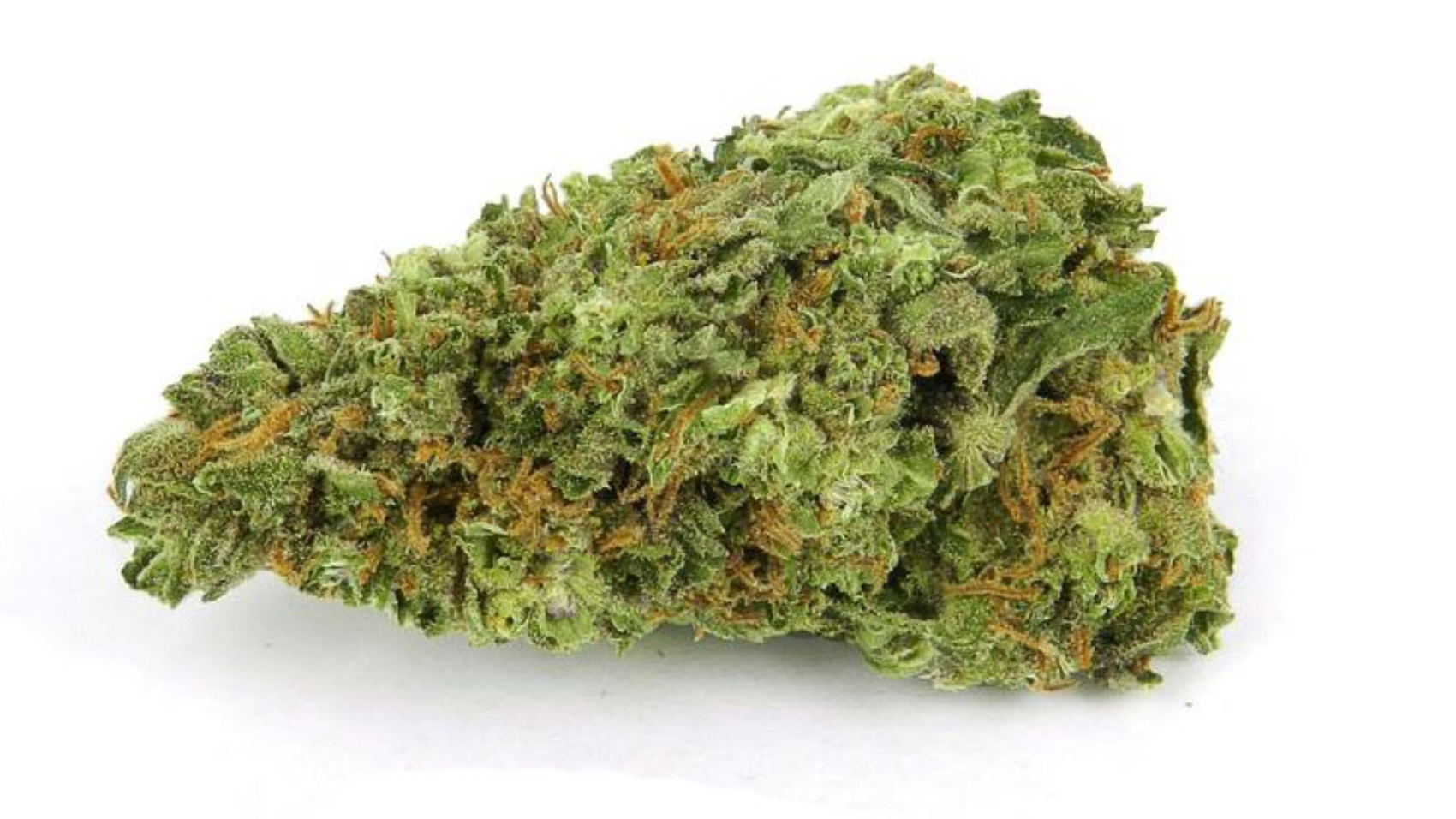 Black-Diamond-weed