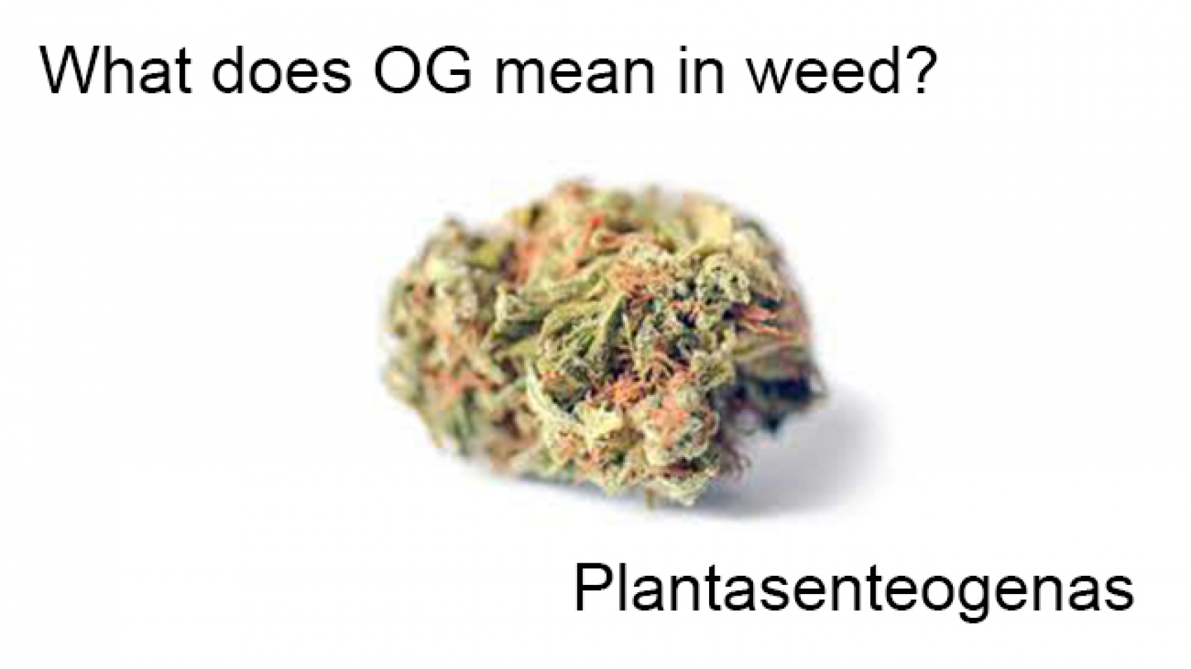 What does OG mean in weed