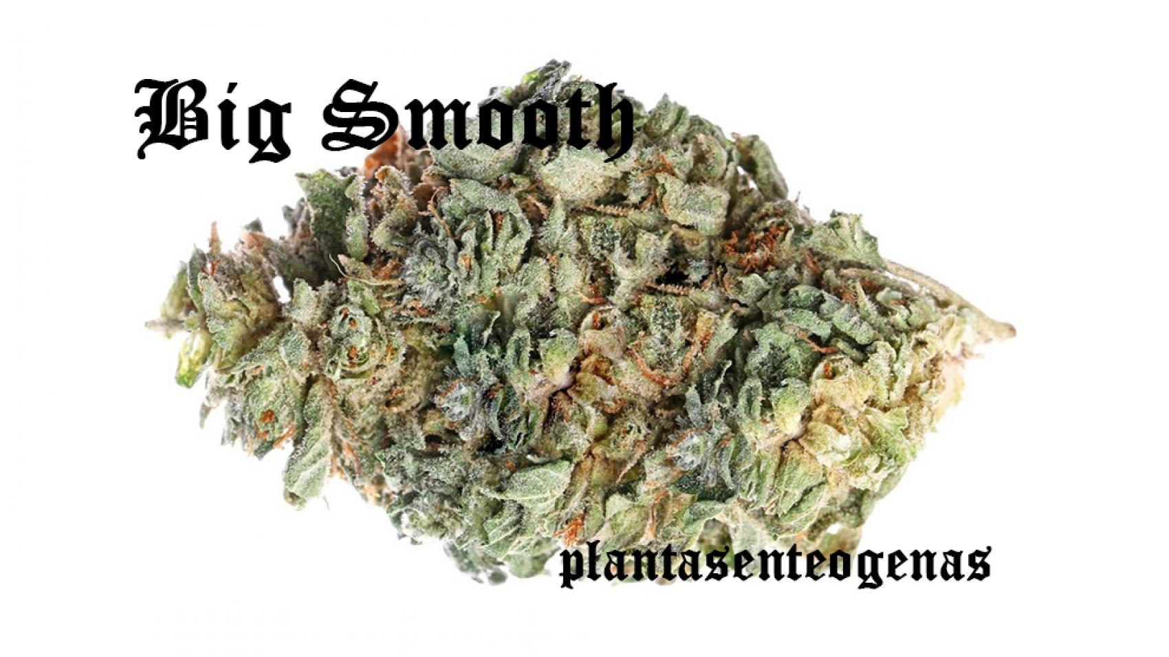 Big-Smooth-004