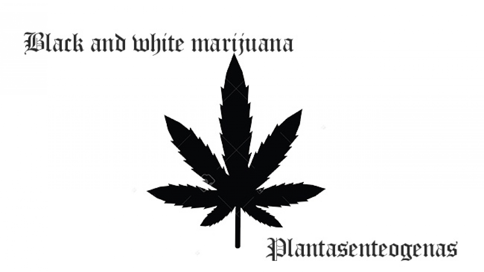 Black and white marijuana