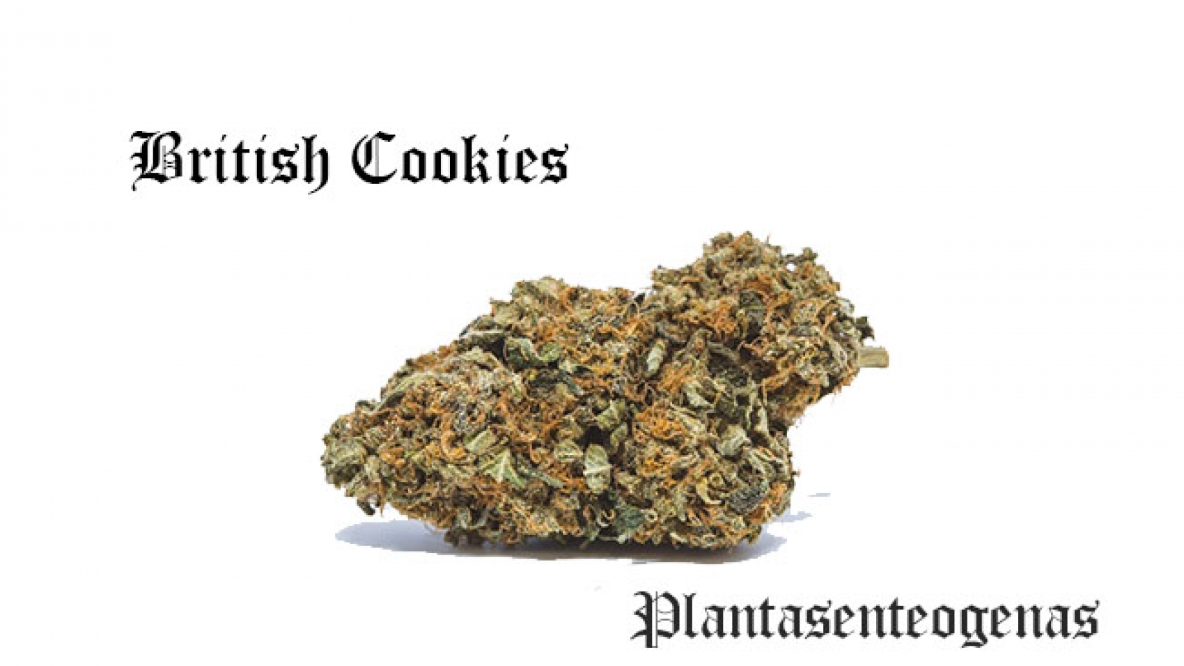 British Cookies