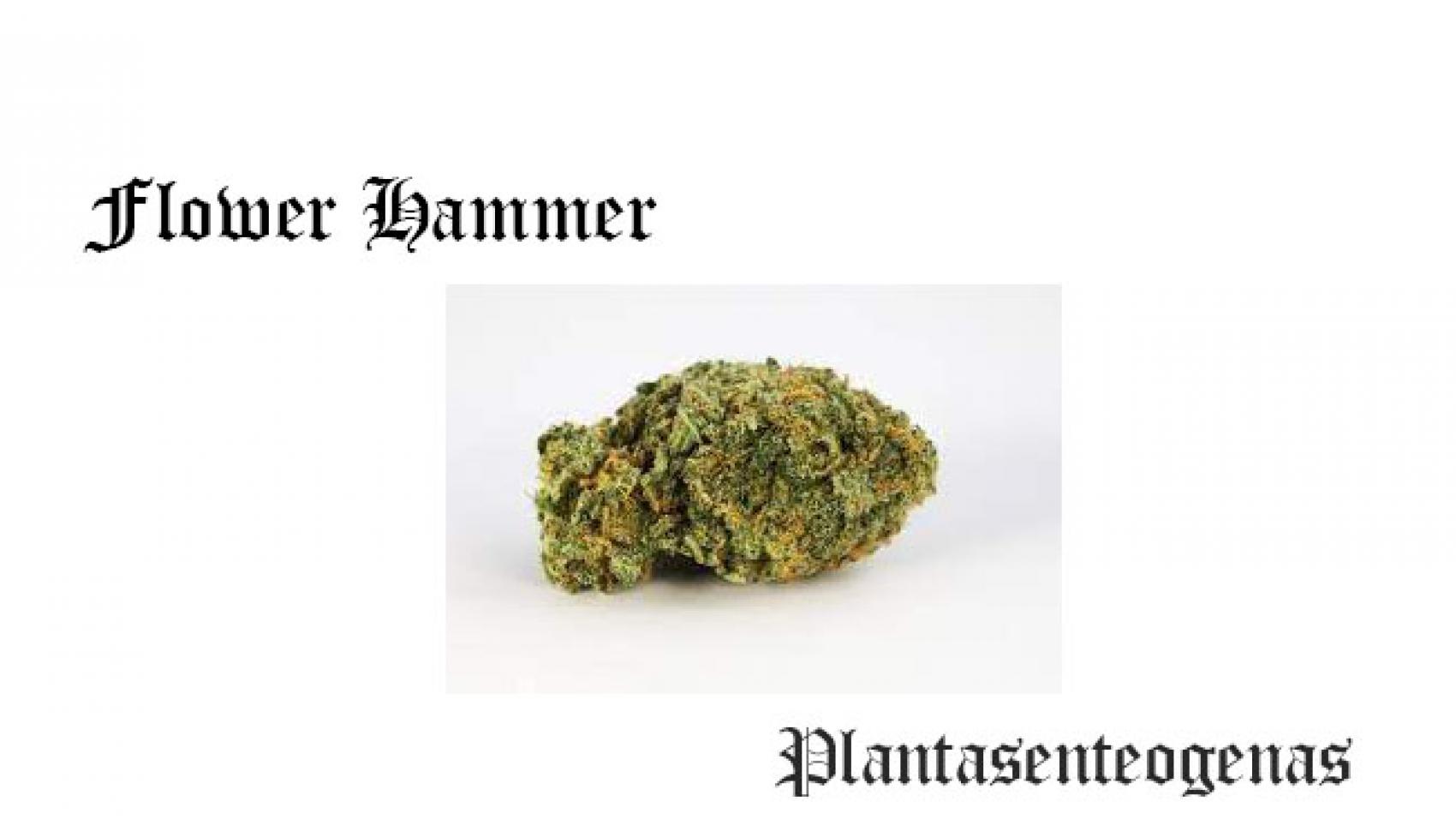 Flower Hammer