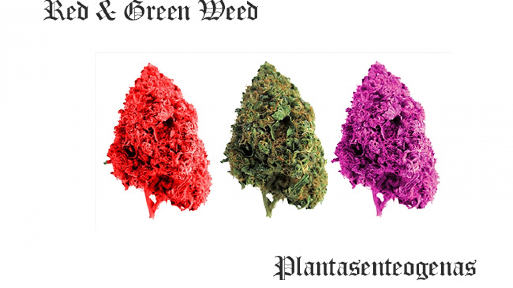 Red & Green Weed