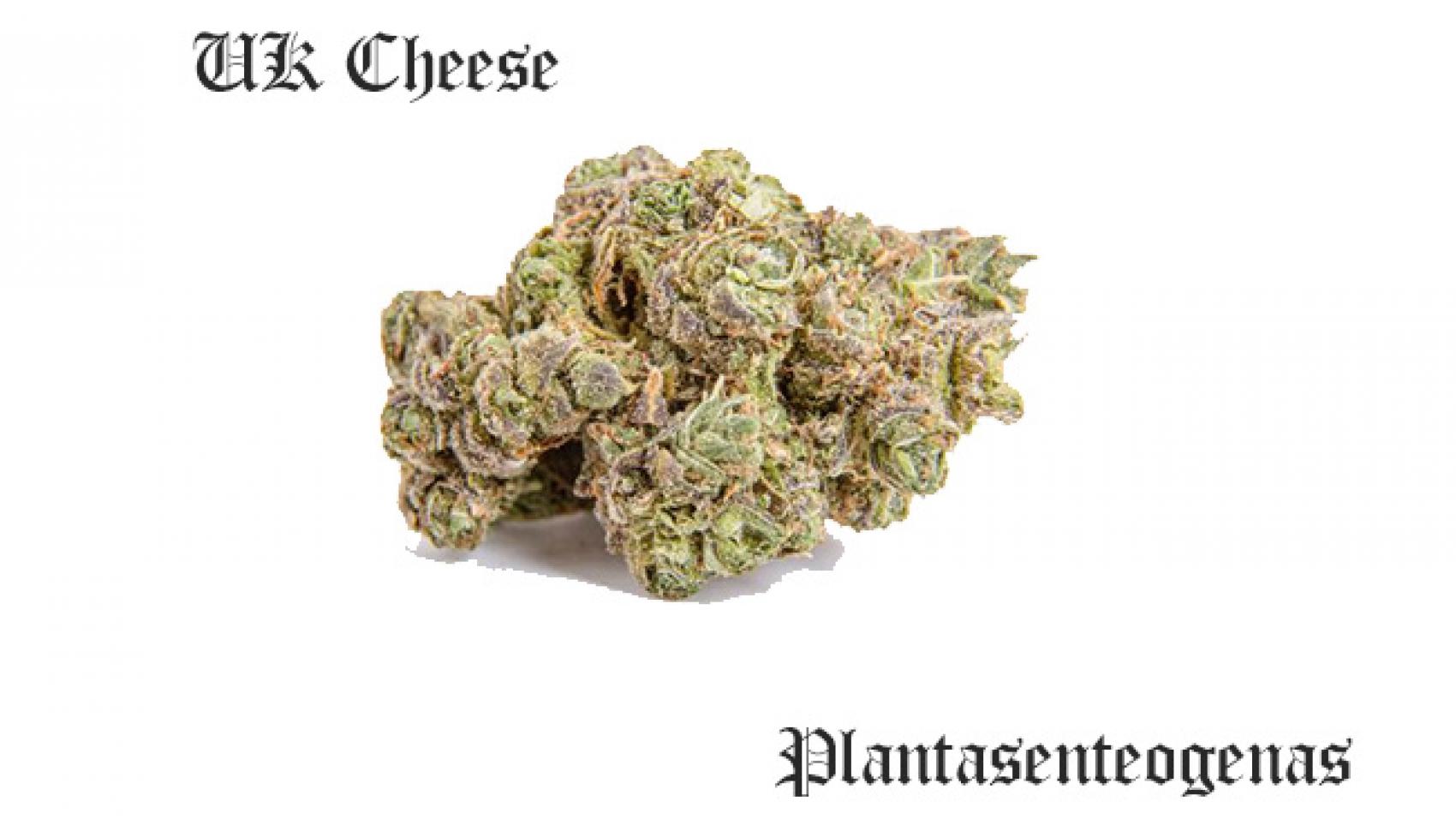 UK Cheese