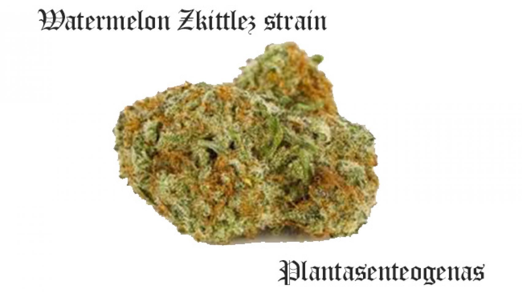 Watermelon Zkittlez strain