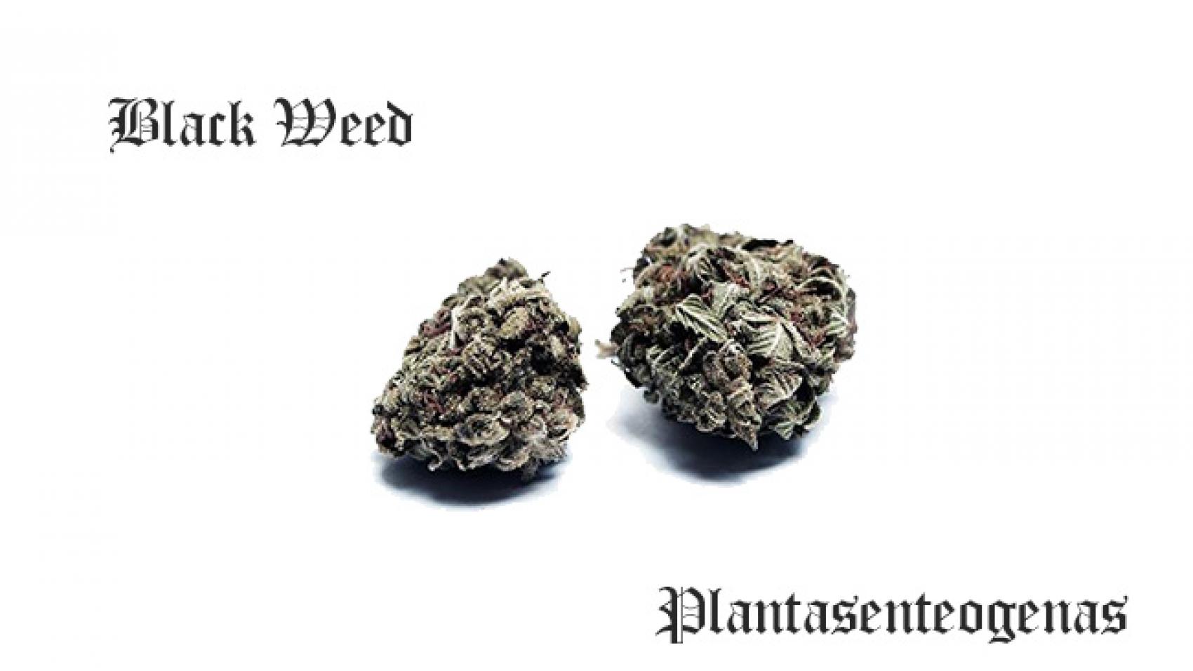 black weed