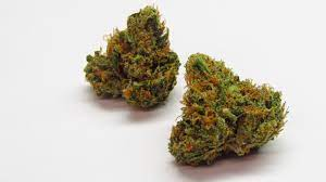tangerine dream weed pics
