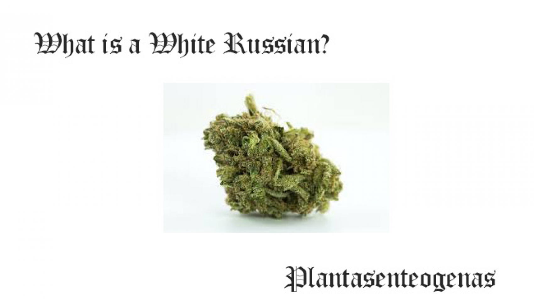 what is a white russian