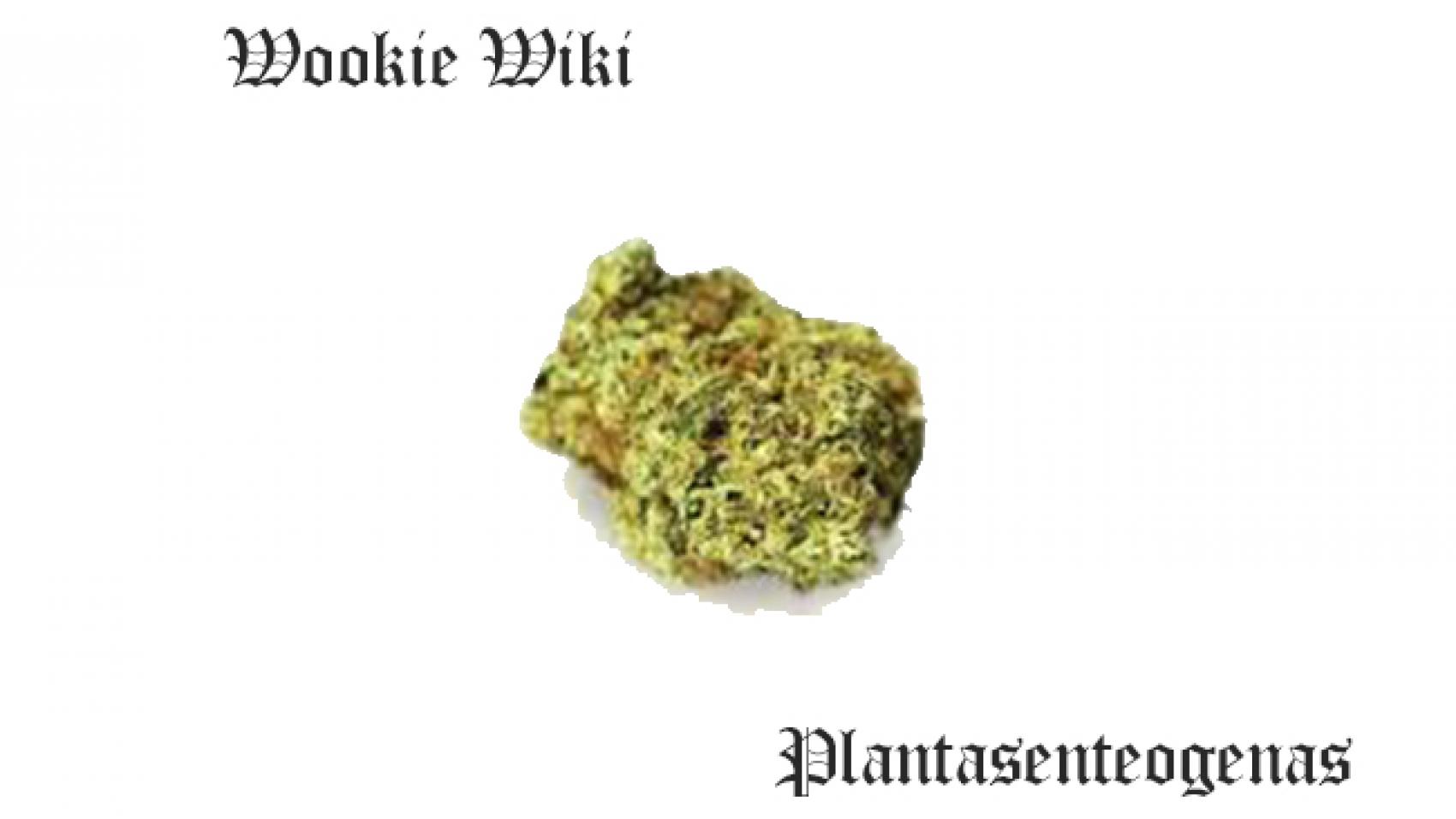 wookie wiki