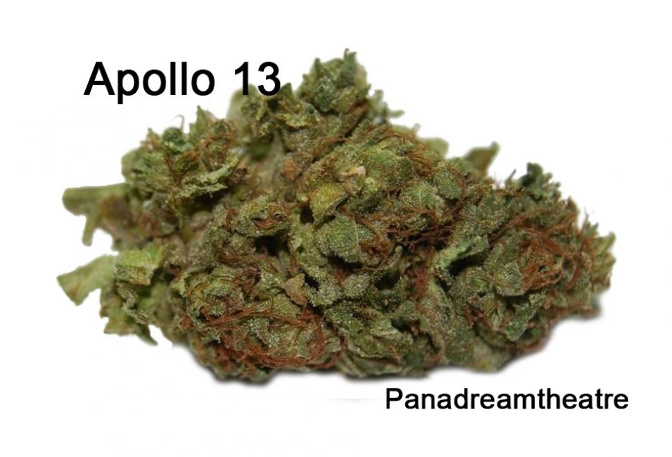 Apollo-13-Strain-5