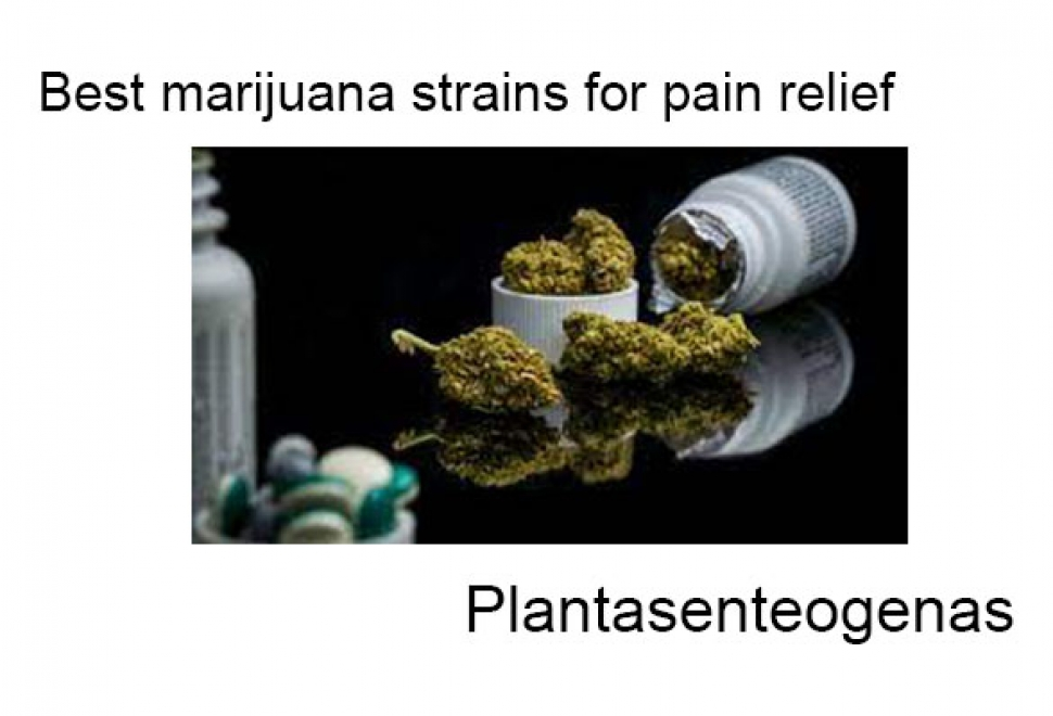 Best marijuana strains for pain relief