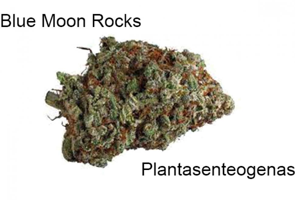 Blue Moon Rocks