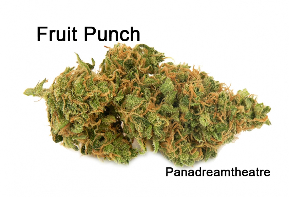 Fruit-Punch10