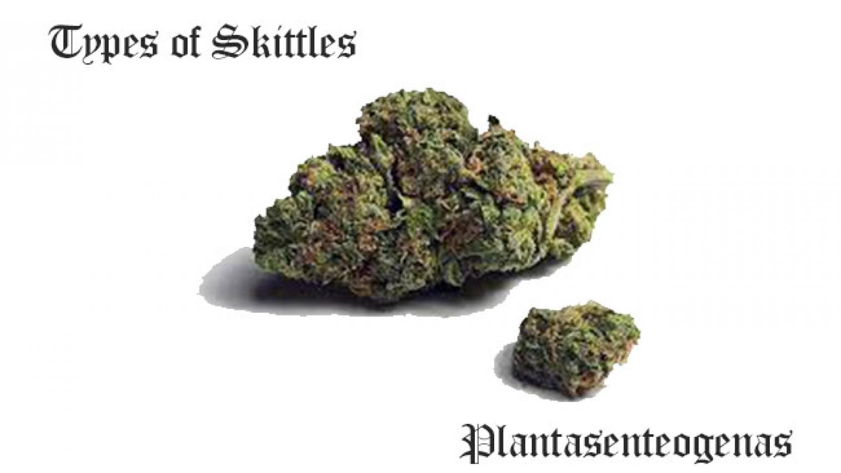types of skittles